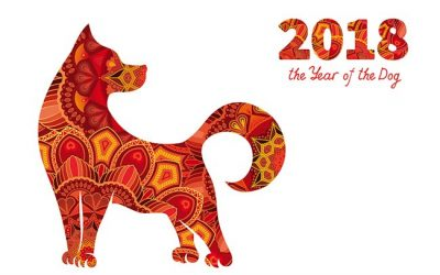 "Leading in ""The Year of the Dog"""